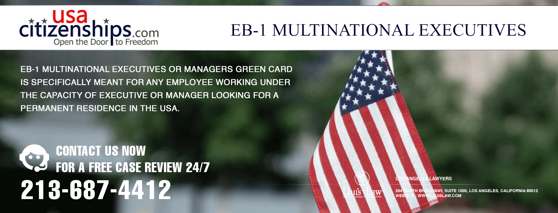 eb 1 multinational executive